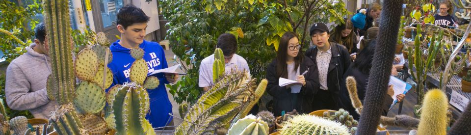 Students studying in greenhouse
